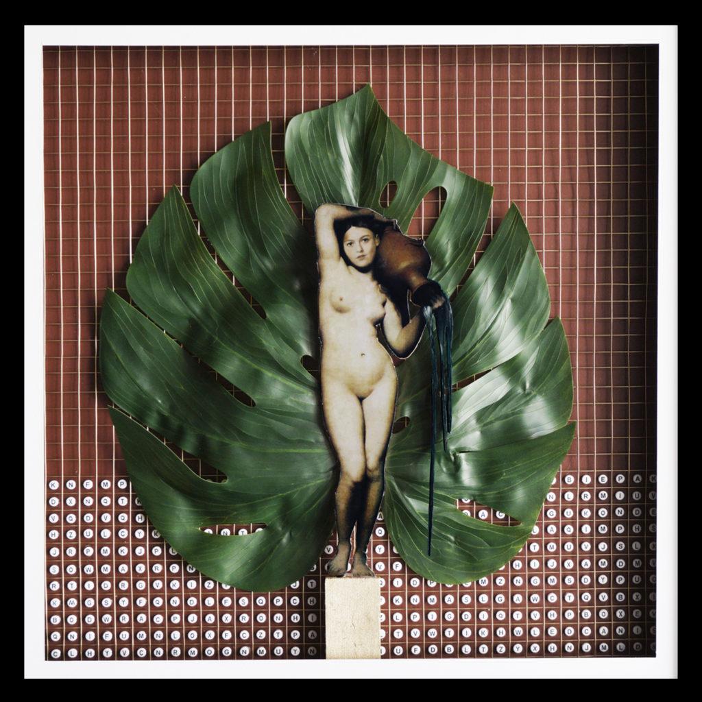 Collage Analogique France Mermet Lyon Artiste lyonnaise venus monstera grille lettres alphabet